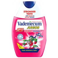 Pasta VADEMECUM 2in1 Junior Strawberry 75ml