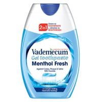 Pasta VADEMECUM 2in1 Menthol fresh 75ml